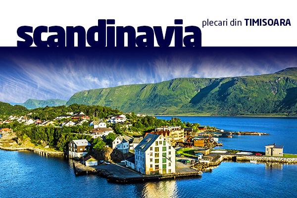 B2B-Scandinavia-TM-01.jpg