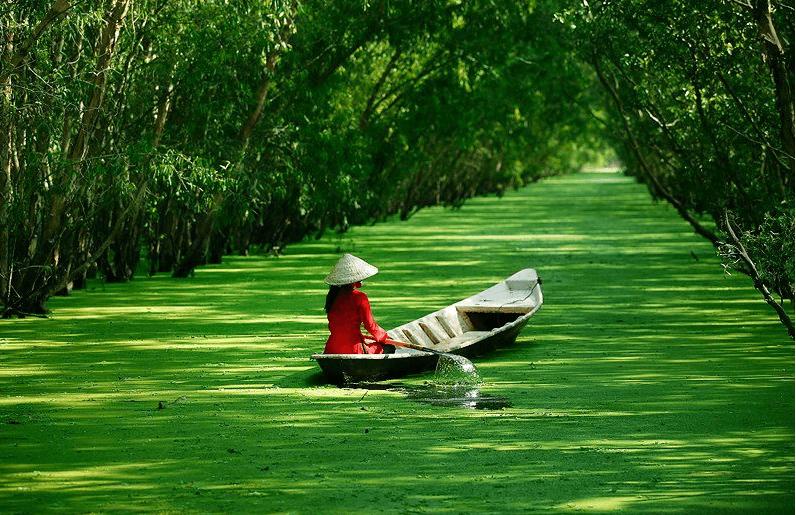 mekong vietnam.png