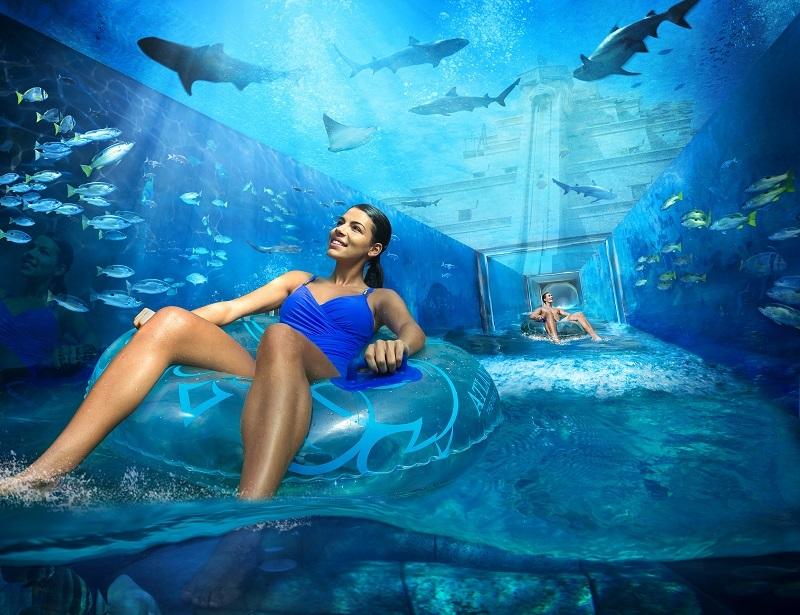 aquaventure-sharkattack.jpg