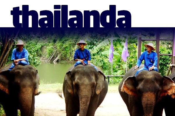 B2B-Thailanda-2016-03.jpg