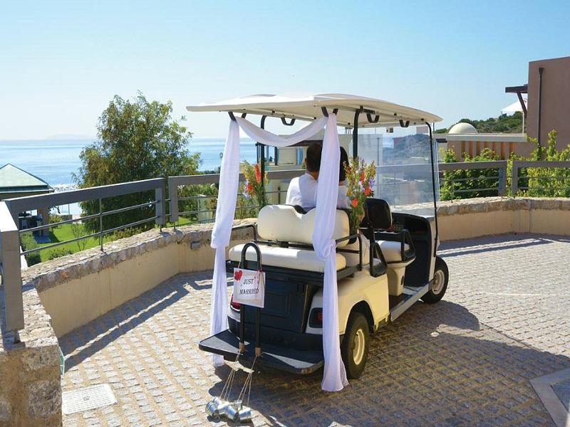 helona-wedding-cart-01_site.jpg