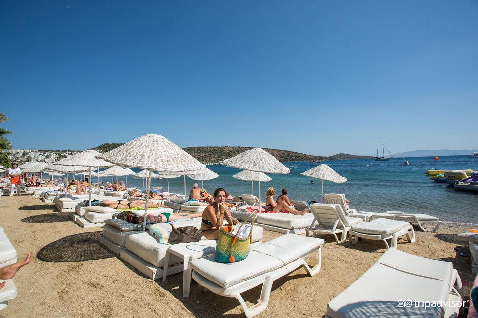 beach--v8239760.jpg