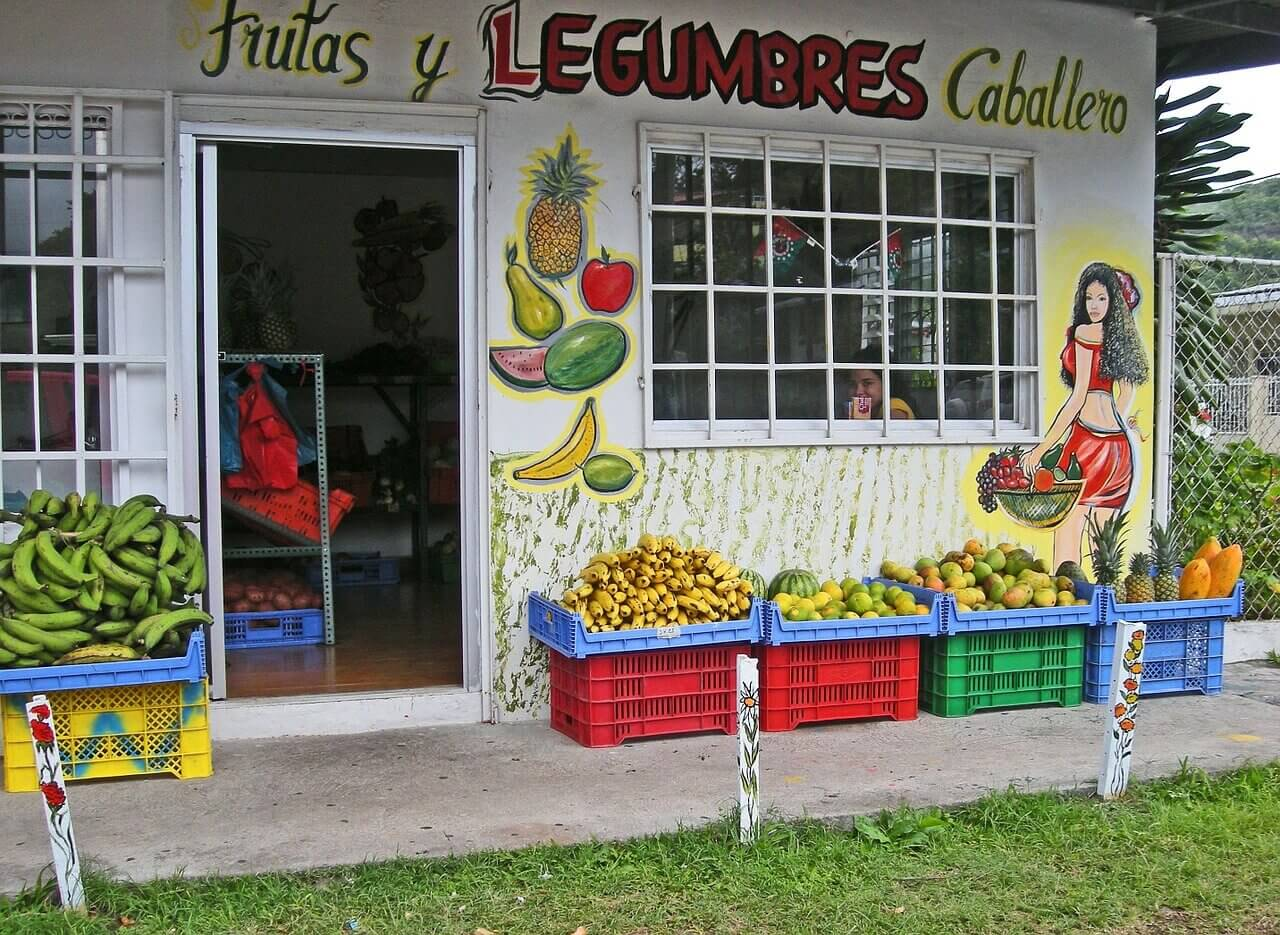 fruits Panama(1).jpg