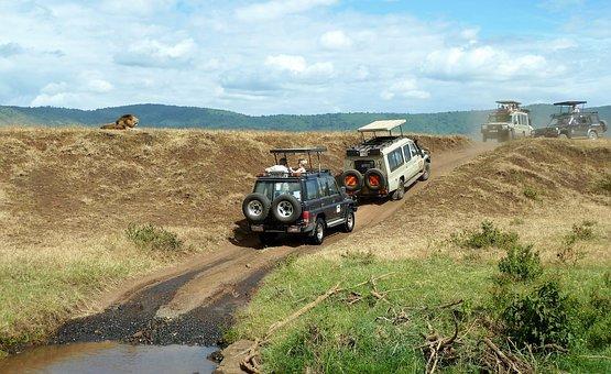 safari Ngorongoro.jpg