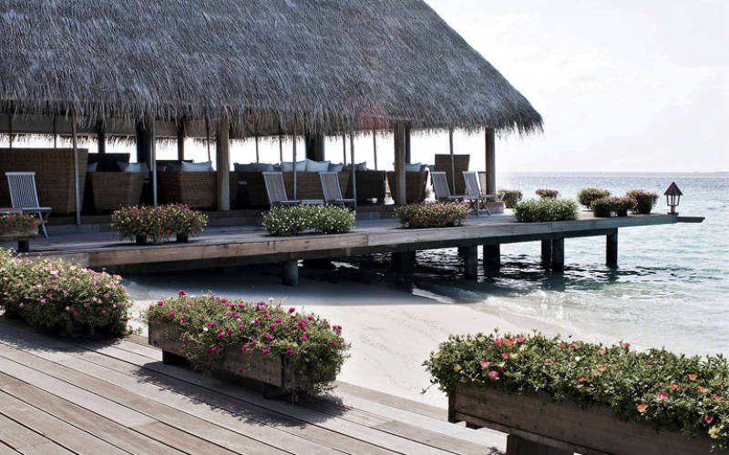 gangehi-island-resort-23253058-1383734391-ImageGalleryLightbox.jpg
