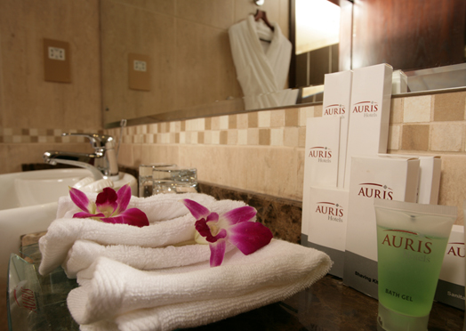 100_bathroom-auris-amenities.jpg