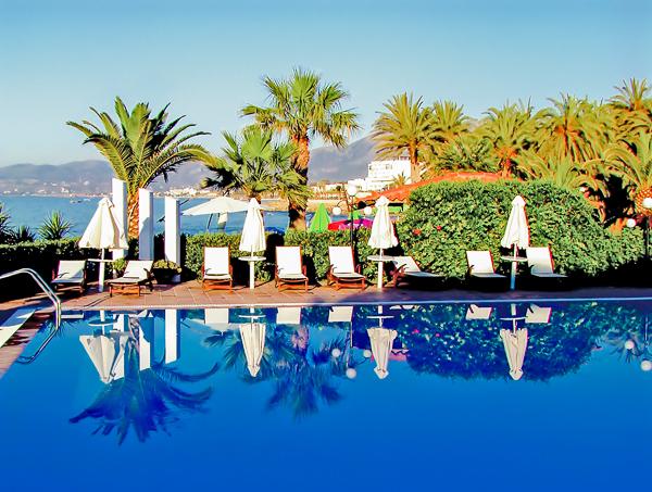 pool palm.jpg